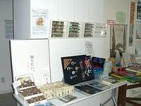 Shop_image1_1